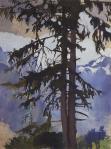 Fir tree. (1914)